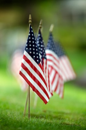 Photograph of several American flags