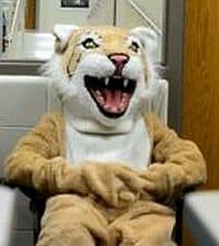 boy wearing a lion school mascot costume