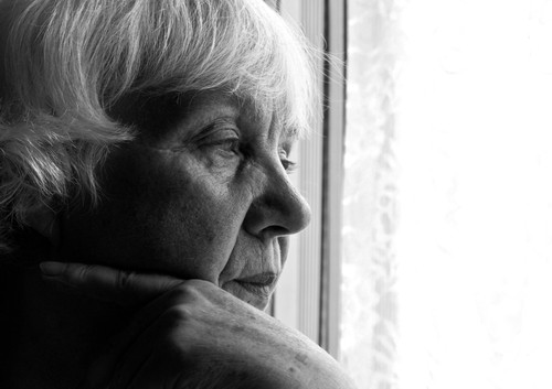 white-haired woman gazes out window