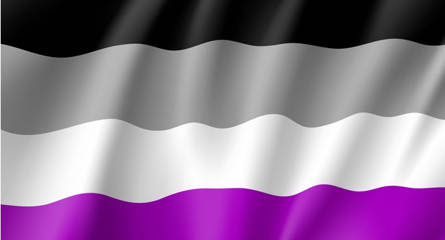 Asexual pride flag with a black, gray, white, and purple stripe.