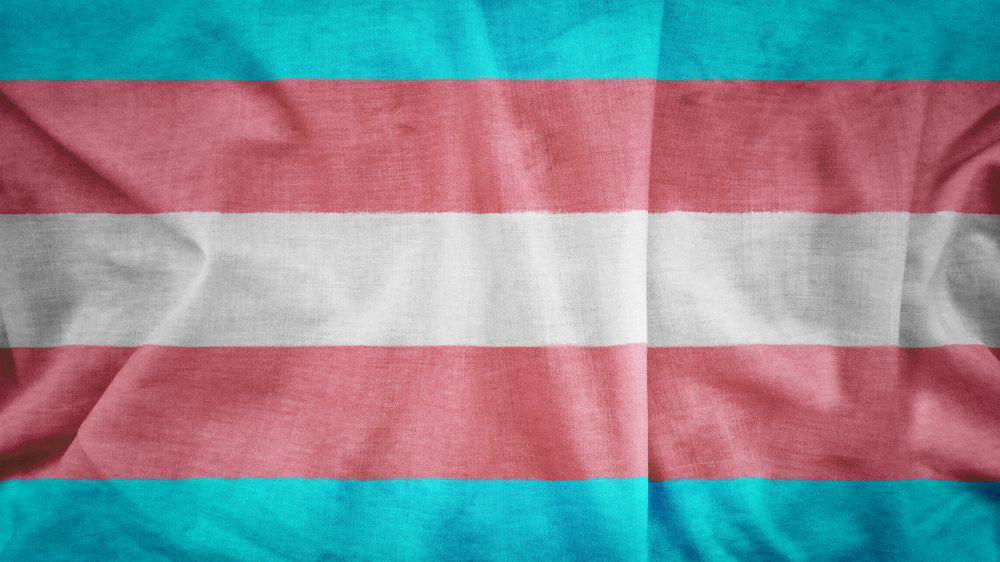 Transgender flag pattern on the fabric texture