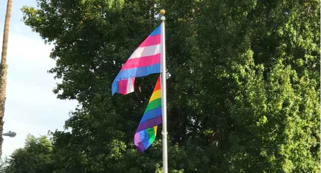 Trans pride flag and LGBTQ pride flag waving on a flagpole in front of trees