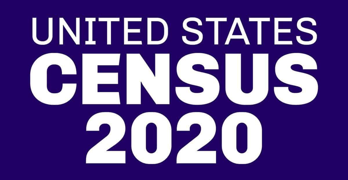 Unites States Census 2020 text with white stars
