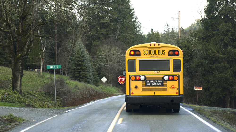 Photo of a school bus from the back driving down a road lined with trees.